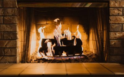Best Wood for Your Indoor Fireplace