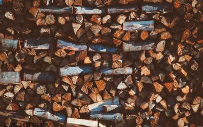 How to Store and Season Your Wood
