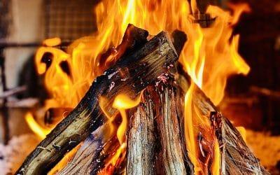 What Wood Burns the Longest?